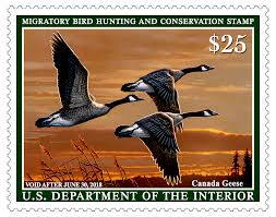 Federal Duck Stamp showing 3 Canada geese flying